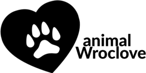 ANIMAL WROCLOVE 2018