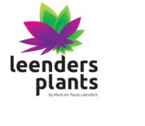 LEENDERS PLANTS