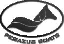 PEGAZUS BOATS